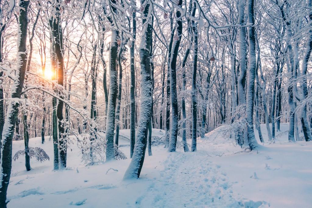 Dünsberg im Winter