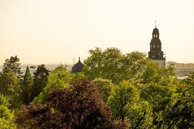 Abendsonne über dem Botanischen Garten und dem Stadtkirchenturm